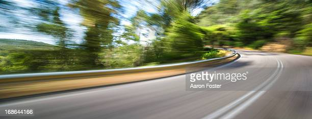 Motion Forrest Hills Corner 2
