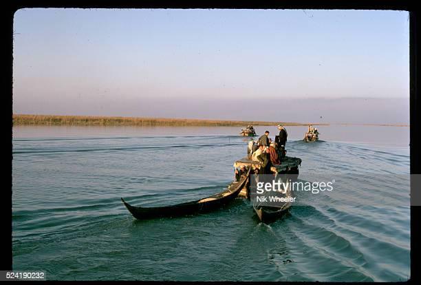 A motorboat tows canoes through the Marsh Iraq   Location The Marshes near Nasiriya Iraq