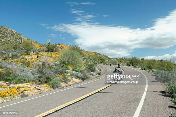 Motorcycles cruise down North Lake Road at Bartlett Lake Recreation Area during the spring poppy bloom in the Tonto National Forest Arizona