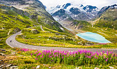 Beautiful view of motorcyclist driving on winding mountain pass road in the Alps through gorgeous scenery with mountain peaks, glaciers, lakes and green pastures with blooming flowers in summer.