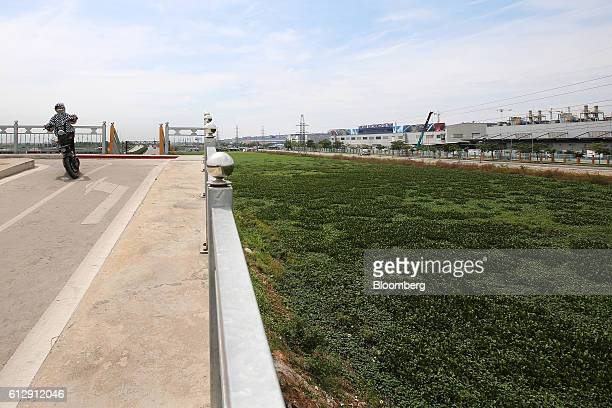 A motorcyclist rides near the Samsung Electronics Vietnam Co Plant at Yen Phong Industrial Park in Bac Ninh Province Vietnam on Thursday Sept 1 2016...