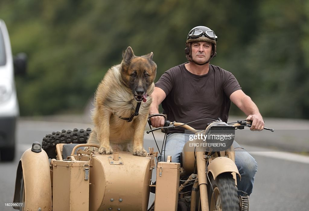 A motorcyclist rides with a dog in his sidecar on September 28, 2013 near Montceaux-les-Meaux, some 60 km east of Paris.