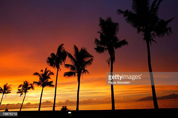 A motorcyle rider drives along the beach at sunset April 13 2007 in Dili East Timor Tallies show current Prime Minister Jose RamosHorta and...