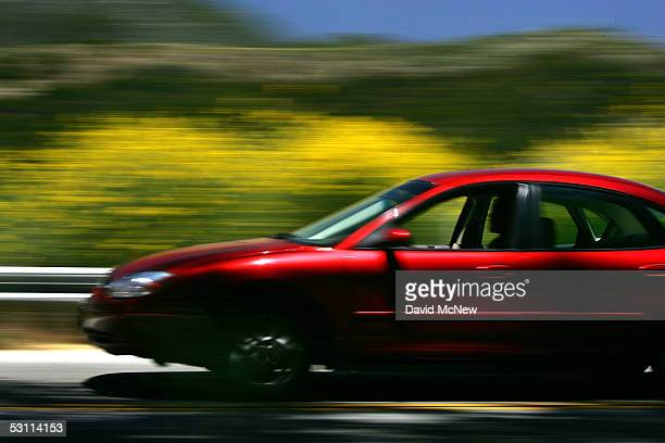 A motorist speeds past flowers as a heavy wildflower bloom the result of last winter's record rainfall continues on the first day of summer along the...