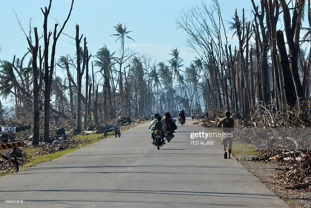 Motorists ride past destroyed trees along a hIghway in Baganga town, Davao Oriental province on December 11, 2012. The United Nations launched a 65 million USD global appeal on December 10 to help desperate survivors of a typhoon that killed more than 600 people and affected millions in the southern Philippines. AFP PHOTO/TED ALJIBE