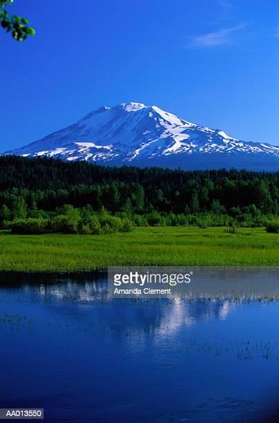 Mount Adams at Trout Lake