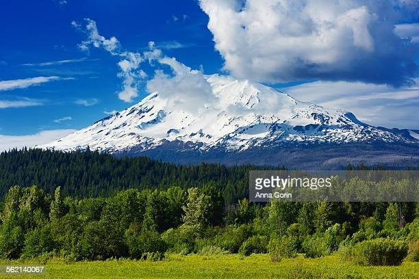 Mount Adams on spring afternoon, Washington