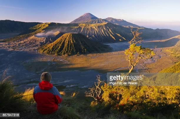 Mount Bromo - Bromo Tengger Semeru National Park - Cemoro Lawang - Indonedia