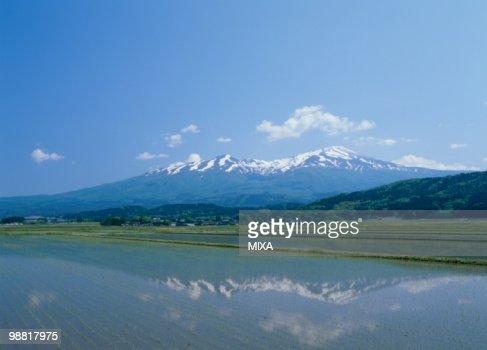 Mount Chokai and Paddy Field, Yuza, Yamagata, Japan