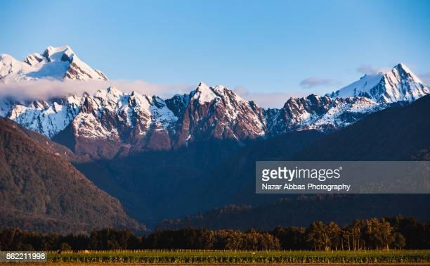 Mount Cook /Aoraki and Mount Tasman background , South Island of New Zealand