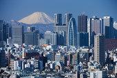 Mount Fuji and the skyscrapers of Shinjuku