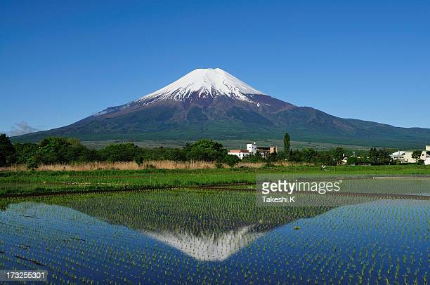 Mount Fuji of early summer