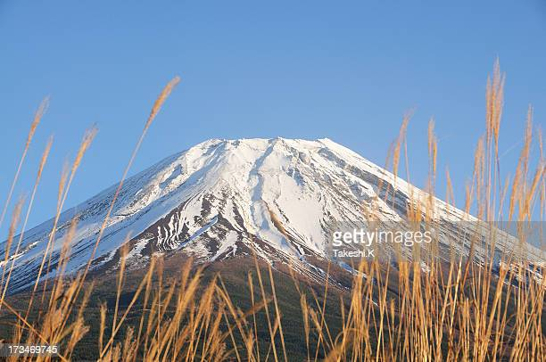 Mount Fuji of winter