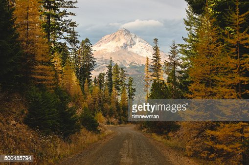 Mount Hood Framed with Nature