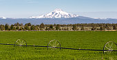 Farm irrigation tools stand in the farm fields near Mt Jefferson on Warm Springs Reservation