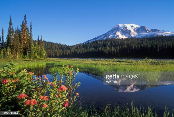 Mount Rainier and Reflection Lake Mount Rainier National Park Washington