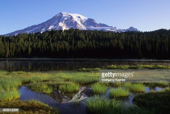 Mount Rainier is reflecting in the Reflection Lakes in Mount Rainier National Park in Washington State USA