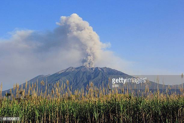 Mount Raung volcano emits steam and ash as seen in the background from Banyuwangi located in Indonesia's eastern Java island on July 23 2015 Mount...