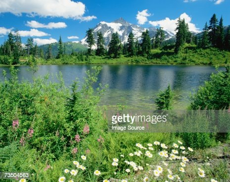 Mount shuksan in north cascades national park : Stock Photo
