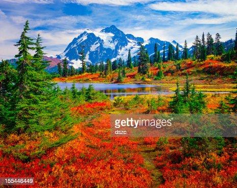 Mount Shuksan, Picture Lake, Washington, brilliant carpet orange autumn colors