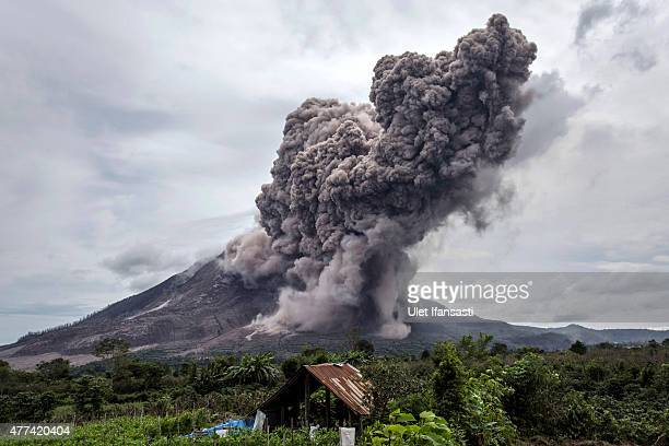 Mount Sinabung spews pyroclastic smoke seen from Tiga Kicat village on June 17 2015 in Sukanalu village North Sumatra Indonesia According The...