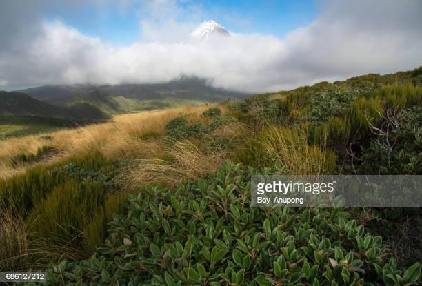 Mount Taranaki (2,518 metres) behind the clouds, Taranaki region, New Zealand.