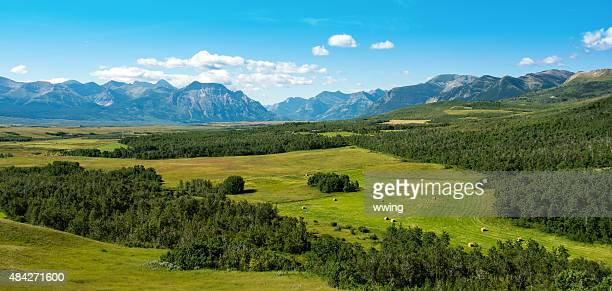 Mountain and Rangeland Panoramic of Southern Alberta with National Parks