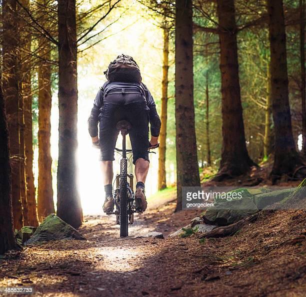 Bicicleta de montanha escalada