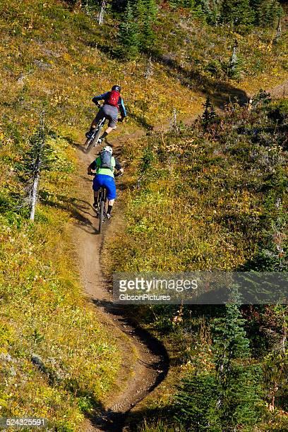 Mountain Bike Columbia Britannica