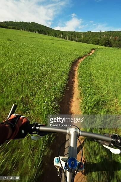 Mountain bike speeding down singletrack trail