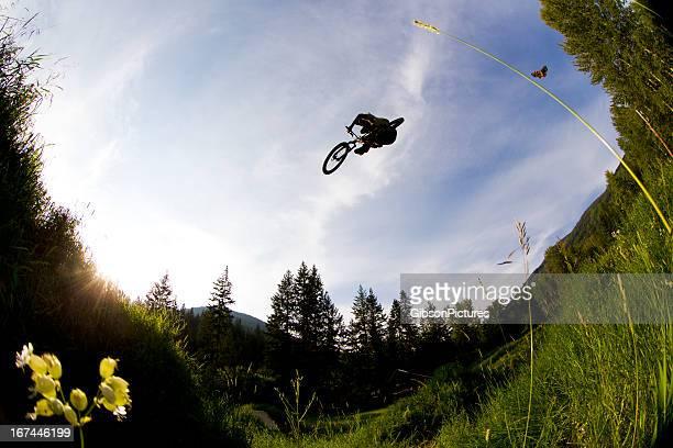 Mountainbiker und Schmetterling