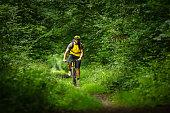 mountain biker on yellow bike in the woods