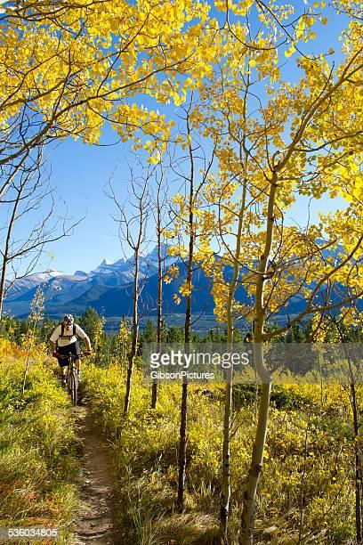 Mountain Biker Man