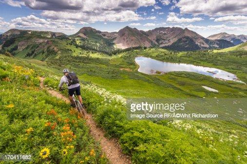 Mountain biker on green trail : Stock Photo