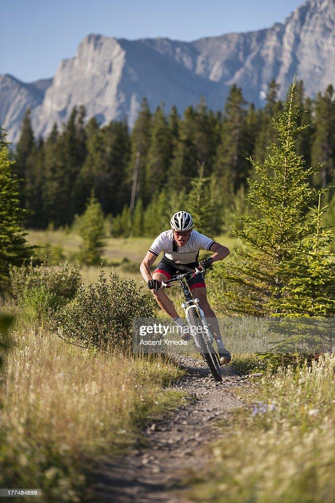 Mountain biker races downhill on mtn path : Stock Photo