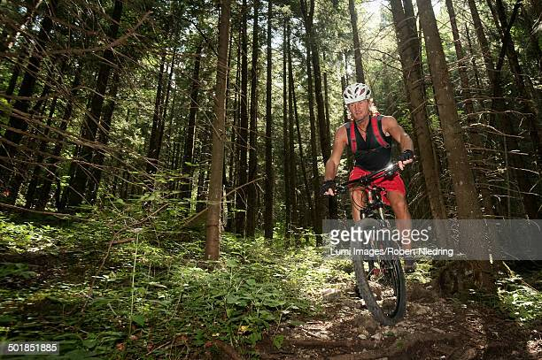 Mountain biker riding downhill in a forest, Wendelstein, Bavaria, Germany