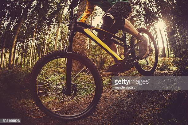 Mountain bike, equitazione su Foresta traccia