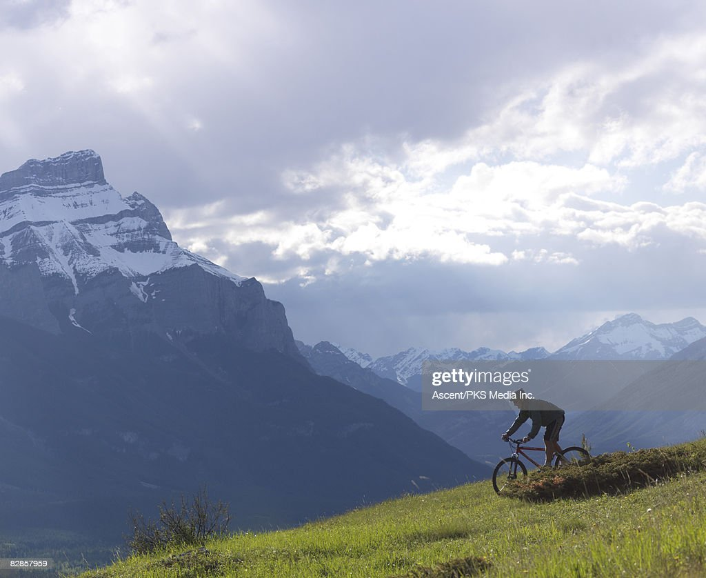 Mountain bikers descends through alpine meadow : Stock Photo