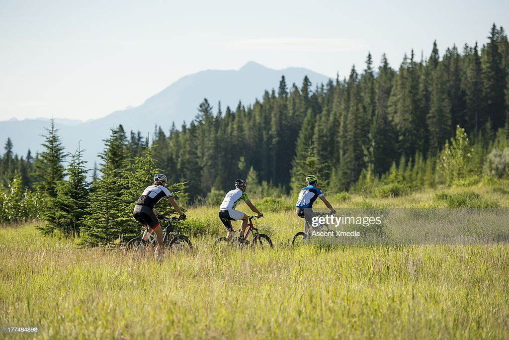 Mountain bikers follow path through mtn meadow : Stock Photo