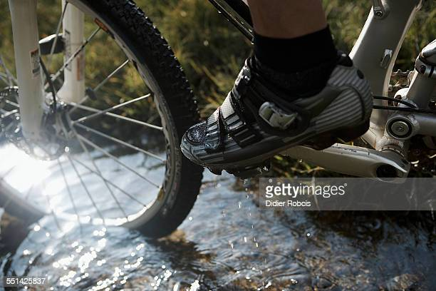 Mountain Bikers Front Wheel in Small Stream