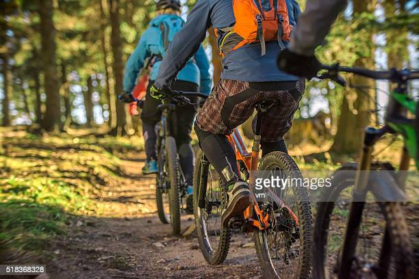 Mountain bikers riding through forest