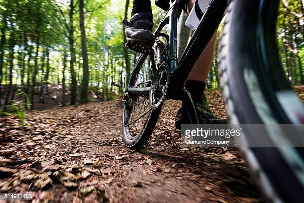 Mountain Biking Klinteskov Denmark