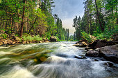 Photo taken in the Yosemite National Park, California, United States