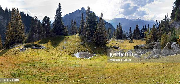 Mountain forest and a lake near Mauritzalm in the Rofan Mountains, Achensee, Tyrol, Austria, Europe