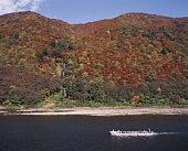 Mountain in autumn, Tozawa village, Yamagata prefecture, Japan