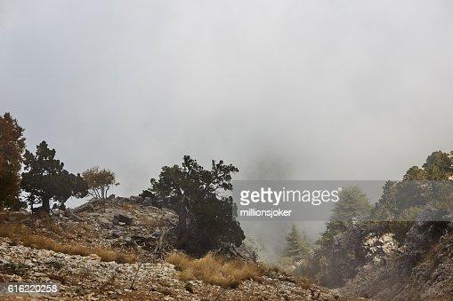 Mountain in Fog : Stock Photo