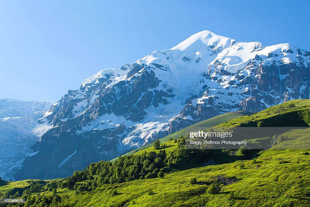 Mountain in snow on and green meadow