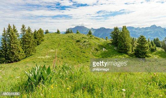 Paisagem de Montanha : Foto de stock