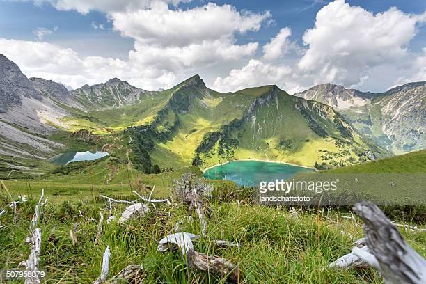 mountain Viehweide