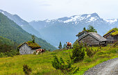 Mountain pasture with cows and cabins in Norway